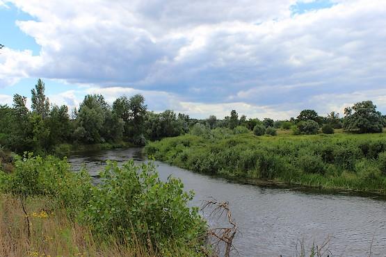 Живописный пейзаж у реки Северский Донец