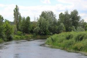 Ветер у реки