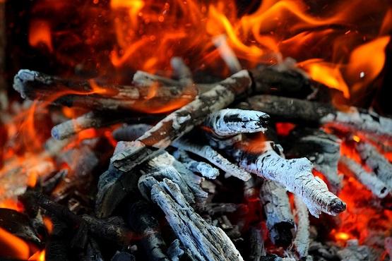 Догорающие в огне ветви